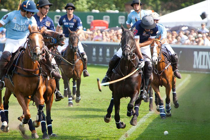 mint polo in the park 2012, london, hurlingham park, gallery
